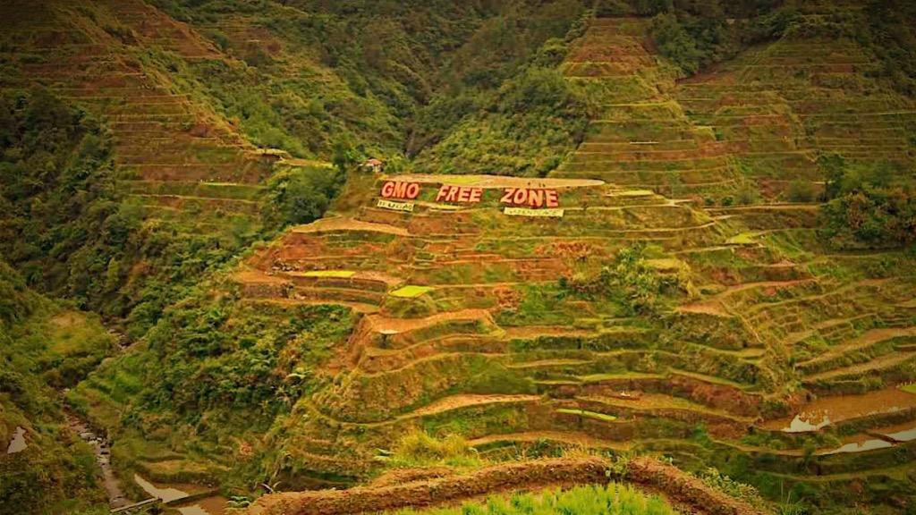 フィリピン・デング・危険な地域_Fotor_Fotor