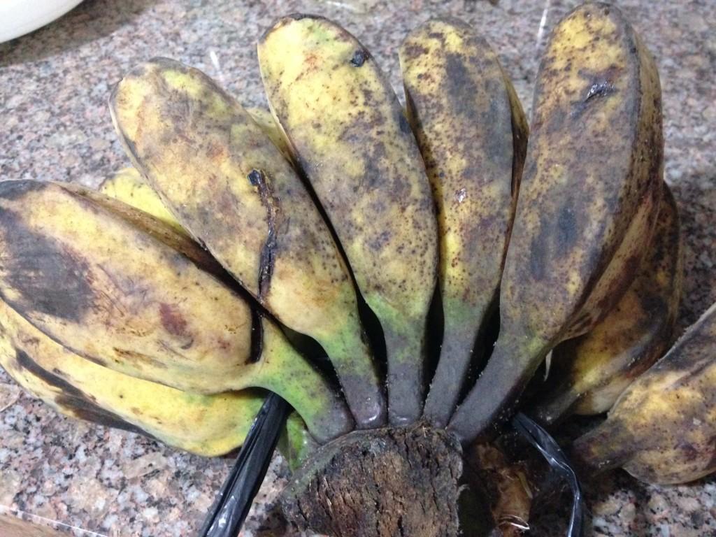 フィリピン バナナ